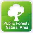 Public Forest / Natural Area