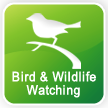 Bird & Wildlife Watching