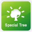 Special Tree